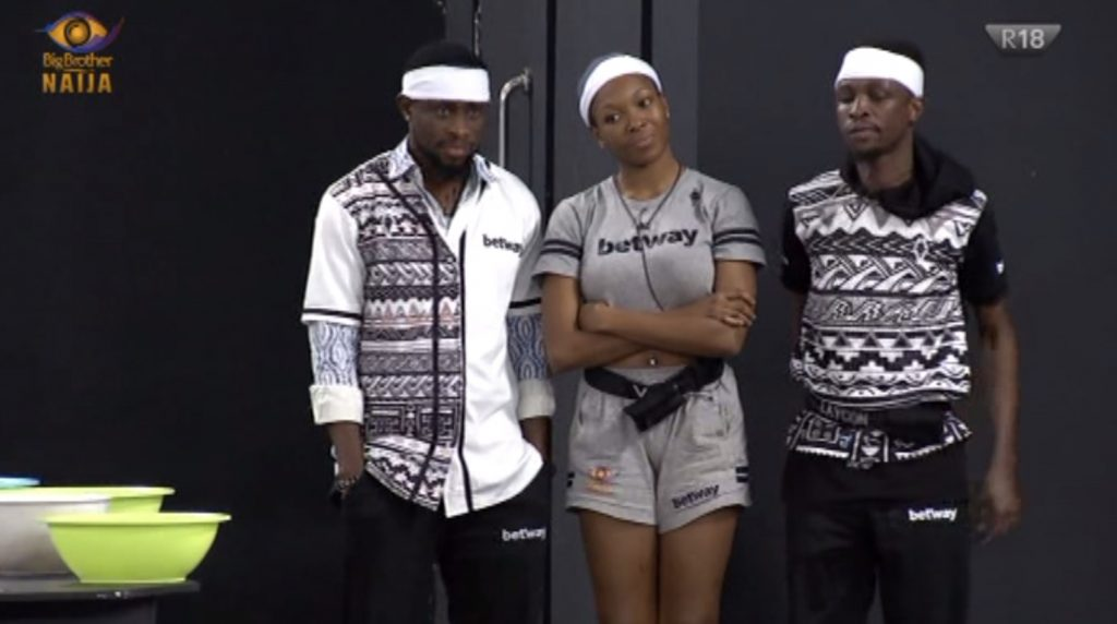 BBNaija 2020: Here Is How To Vote For Your Favourite Housemates - Vantage News Nigeria