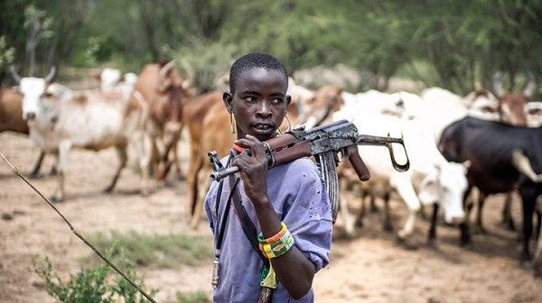 Bauchi Governor Under Fire For Saying Fulani Herders Carry AK-47 For Self-defence - Vantage News Nigeria